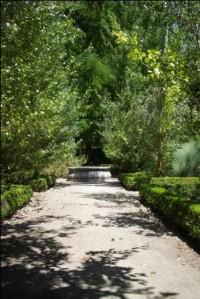 Madrid El jardin Botanica 2